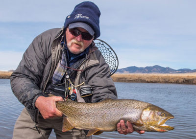 Trophy Dream Stream Cutthroat