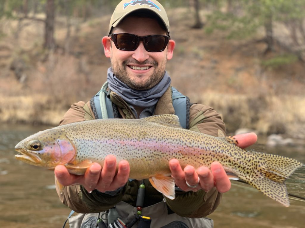 Perfect wild trout from the South Platte River.