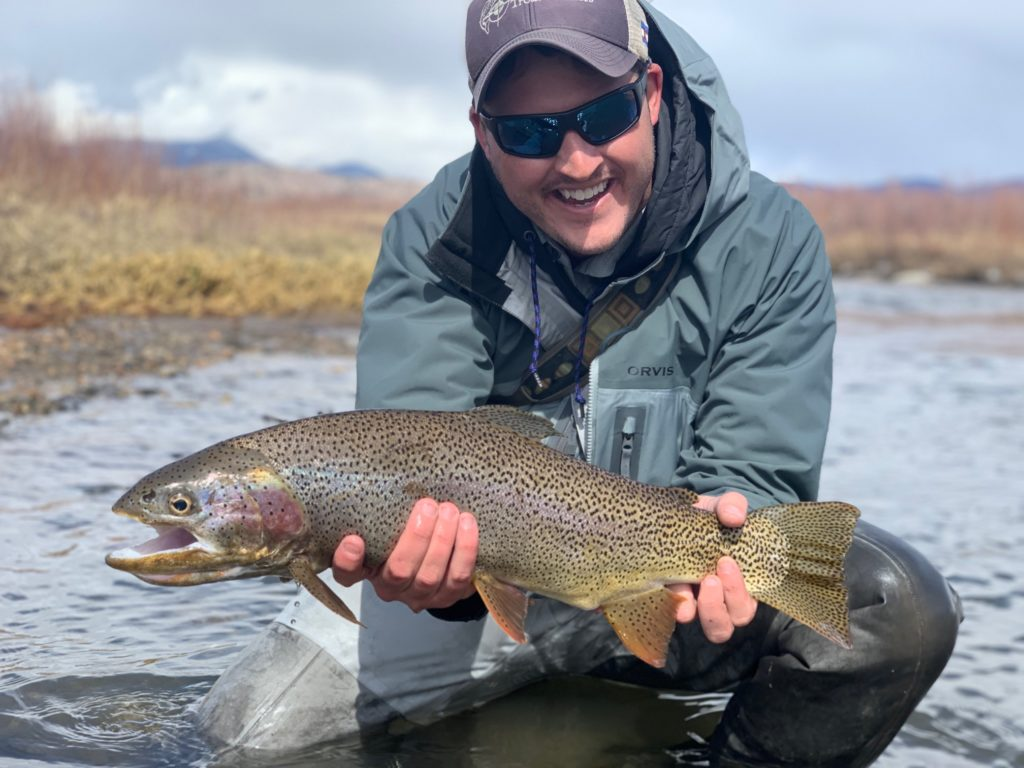 A large Cutbow from the South Platte