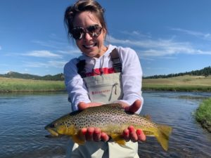 Great brown trout from private water lease, Abell River Ranch