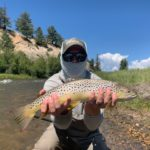 Brown Trout from Santa Maria Ranch in South Park Colorado.
