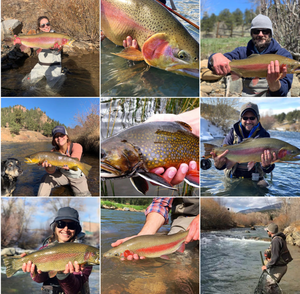 Our 9 most liked Colorado fly fishing photos