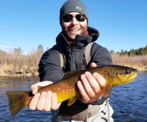 Cool wild brown trout landed near Denver Colorado!