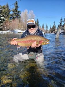 Blue River Trophy Rainbow Trout