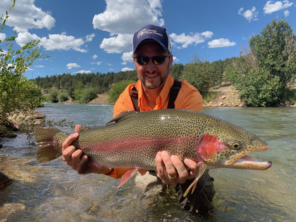 Trophy trout from a guided fly fishing trip near Denver.