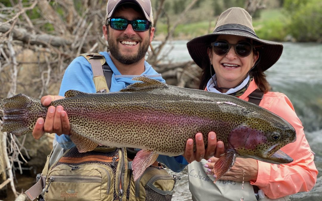 Trophy Trout Near Denver!