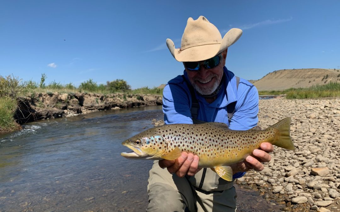 South Platte River Fishing Report // Fall Update
