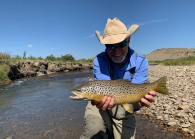 Trophy brown trout from the Middle Fork of the South Platte