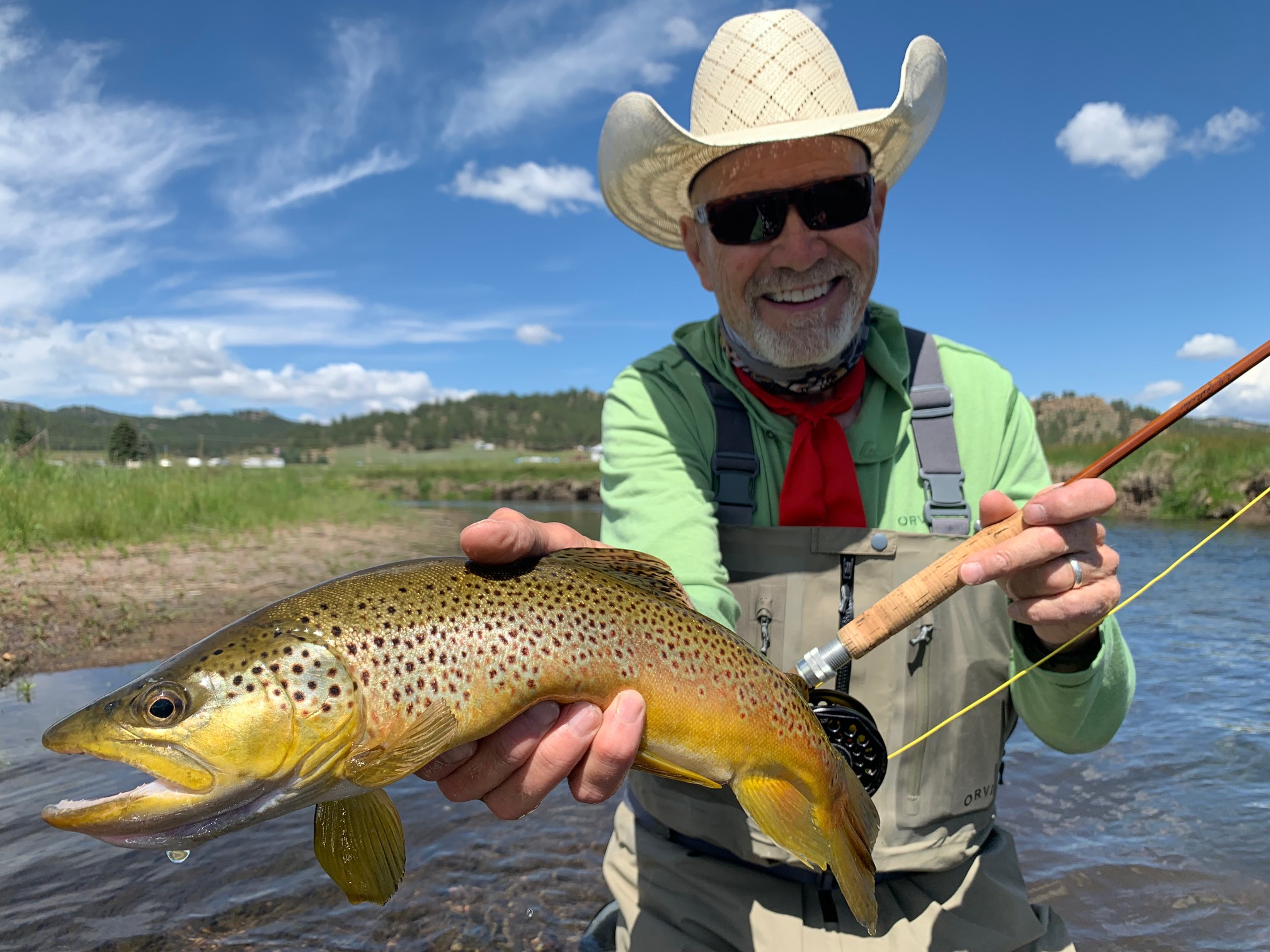 Wild brown trout on a dry fly from a guided fly fishing trip to Abell River Ranch