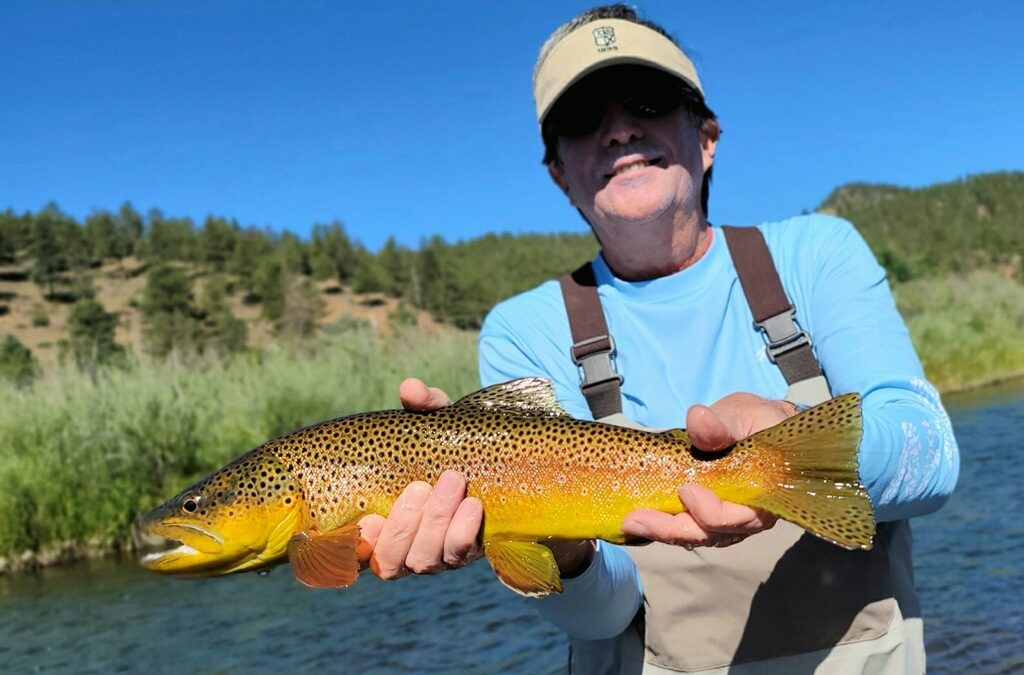 Deckers Dry Fly Fishing
